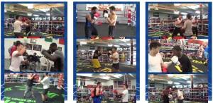 Boxing Combinations Galore